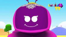Leliko Tv – 14 Şubat 2014 -Düşyeri