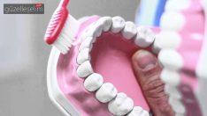 Neden Dişler Dairesel Hareketlerle Temizlenmemelidir?
