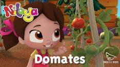 Niloya – Domates – Yumurcak Tv