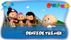 Pepee Yeni Bölüm:12 / Denizde Yüzmek -Düşyeri