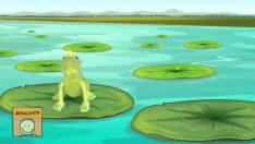 4 Küçük Kurbağa Şarkısı Bir Arada