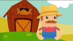 Ali Baba'nın Çiftliği Şarkısını Öğreniyoruz