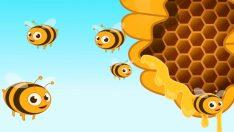 Arı Vız Vız Vız Diye Dolaşır – Çocuk Şarkısı