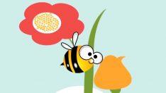 Arı Vız Vız Vız Şarkısını Öğreniyoruz