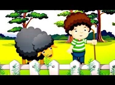 Baa Baa Black Sheep – İngilizce Çocuk Şarkısı