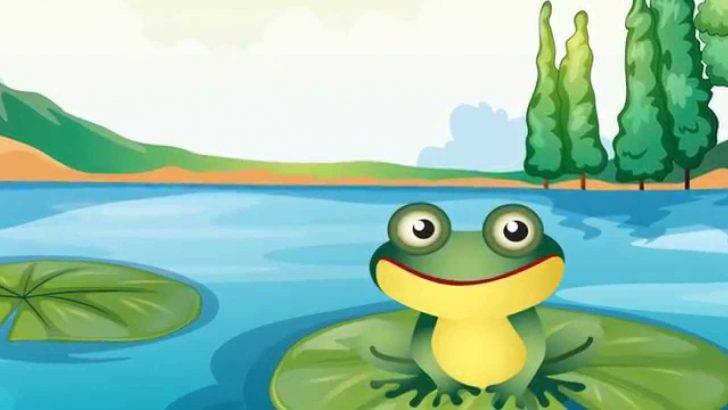 Çocuklarla Küçük Kurbağa Şarkısı
