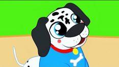 Köpeğim Hav Hav der Dinle – Çocuk Şarkısı Sözleri