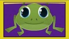 Küçük Kurbağa Çocuk Şarkısı – Adisebaba Çocuk Şarkıları Videoları