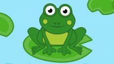 Küçük Kurbağa Kuyruğun Nerede – Çocuk Şarkısı
