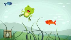 Küçük Kurbağa Şarkısı Dinle