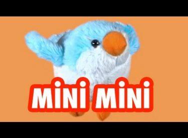 Kuklalarla Mini Mini Bir Kuş Donmuştu Şarkısı