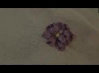 Mine Çiçeği Yapımı – Kurdela Nakışı
