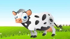 Old Macdonald Had A Farm – İngilizce Çocuk Şarkısı