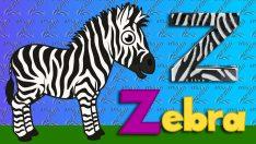 Z Harfi – ABC Alfabe – Çocuk Şarkıları