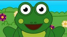 Küçük Kurbağa Sözleri ve Dinle – Çocuk Şarkıları