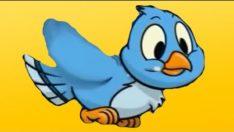 Mini Mini Bir Kuş – 6 Sevilen Çocuk Şarkısı Bir Arada