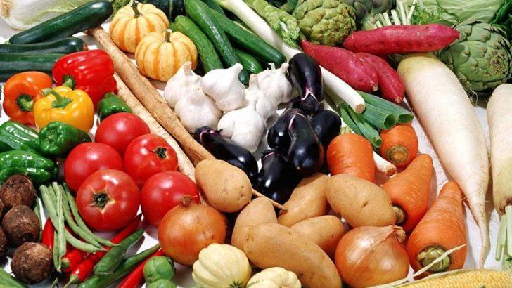 Sebze Tohumlarının Ekim Zamanı