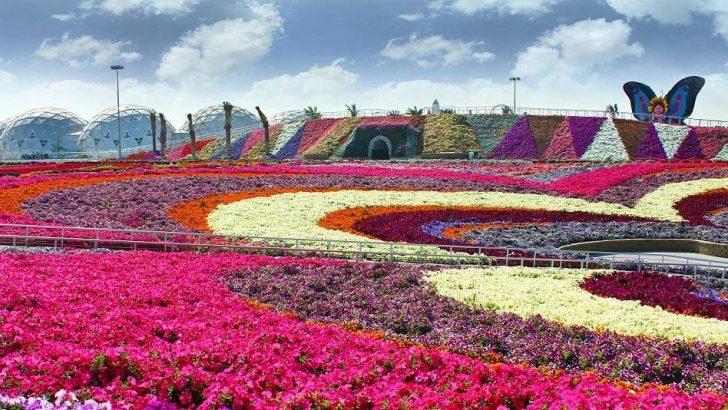 Hafızanızdan silinmeyecek bahçe tasarımı