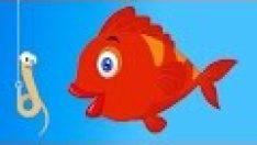 Kırmızı Balık – 3 Çocuk Şarkısı Bir Arada