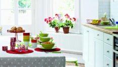 Beyaz Mutfaklara Renkli Öneriler