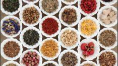Hangi Bitki Çayı Ne İşe Yarar?