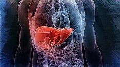 Çocuklarda Karaciğer Yağlanmasını Önlemek İçin 7 Öneri