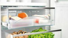 Buzdolabında Bozulan Gıdaların Kokusu Nasıl Gider?
