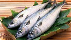 Balık Tüketiminin Ruh Sağlığına Etkileri