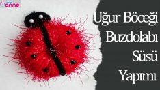 Uğur Böceği Dolap Süsü Nasıl Yapılır ? Videolu Anlatım