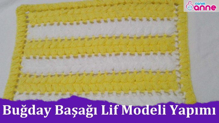 Buğday Başağı Lif Modeli Yapımı, Başak Lif