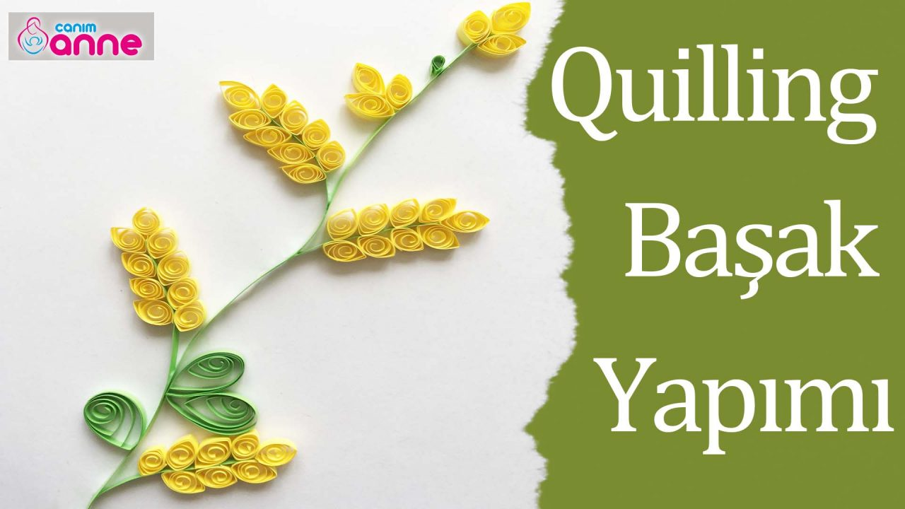 Quilling Başak Yapımı