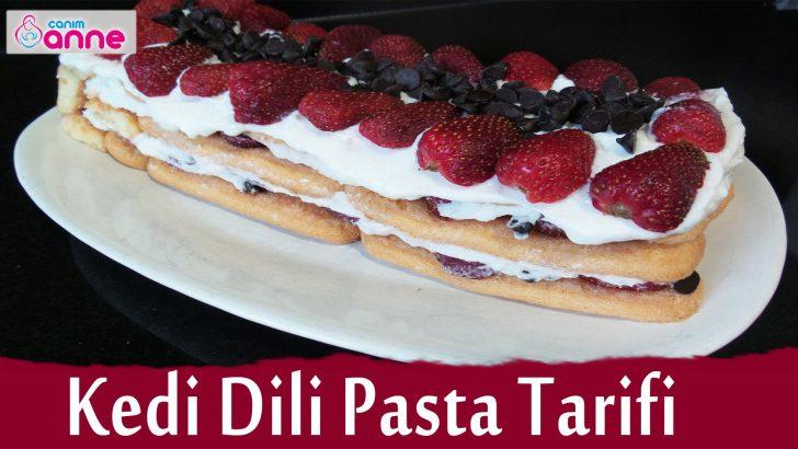 Kedidili Pasta Tarifi – Yapımı Çok Kolay Pasta