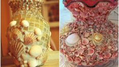 Deniz Taşlarından Neler Yapılabilir?
