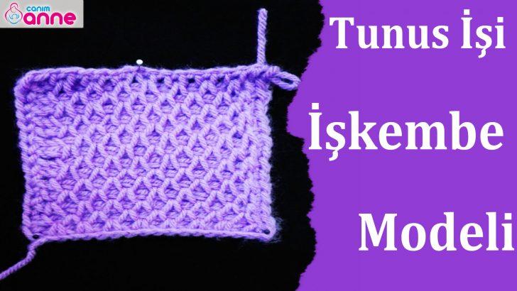 Tunus İşi İşkembe Modeli Detaylı Anlatım