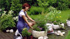 Yaz Aylarında Bahçe Bakımı