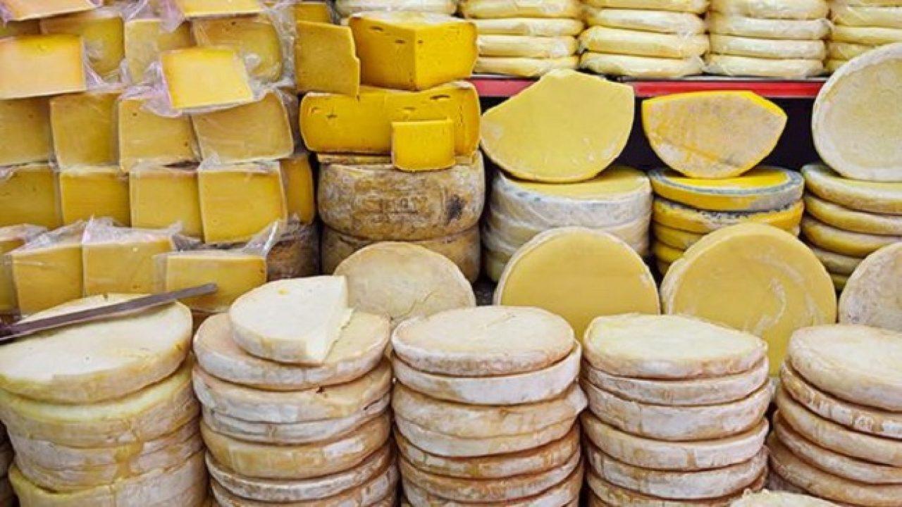Türkiye'ye Özgü Peynir Çeşitleri