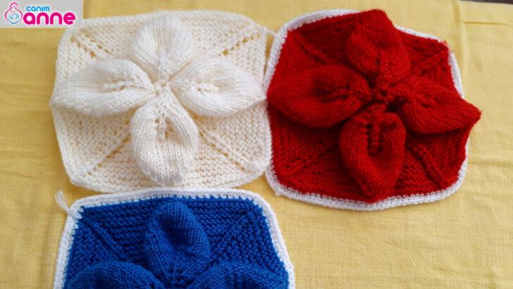 5 Şiş yapraklı battaniye modeli yapımı