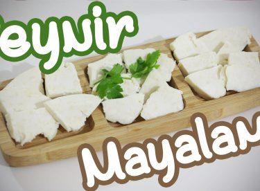 Ev yapımı peynir tarifi – Köy peyniri nasıl yapılır ?