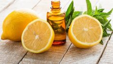 Limon Kabuğunun Farklı Kullanım Alanları