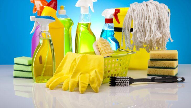 Kolay Ev Temizliği Fikirleri
