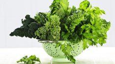 Yeşillikleri Buzdolabında Nasıl Saklamalıyız?