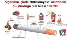 Sigaranın İçindeki Zararlı Maddeler