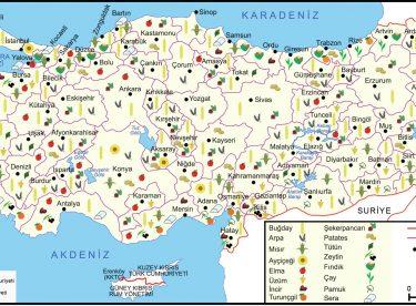 Türkiye Tarım Haritaları