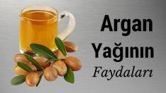 Argan Yağı, Argan Yağının Faydaları ve Kullanım Alanları