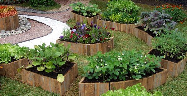 Bahçedeki sebzeler için harika fikirler