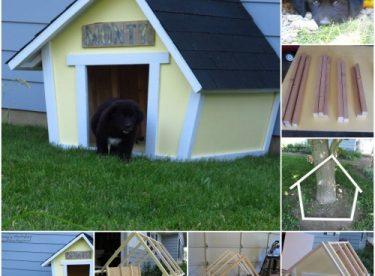 Köpek Kulübesi Yapımı