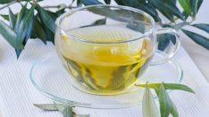 Zayıflamak İçin Zeytin Yaprağı Çayı