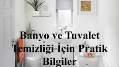 Tuvalet ve Banyo Temizliğinde Pratik Bilgiler