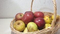 Elma Sirkesi Kürü ile Göbek Yağlarından Kurtulun