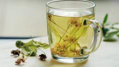 Ihlamurun Faydaları- Ihlamur Çayı Nasıl Yapılır?
